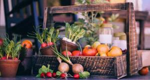 Gemüse im Hochbeet anbauen
