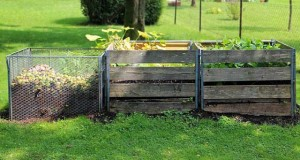 Kompost anlegen: Kompostieren ganz einfach gemacht