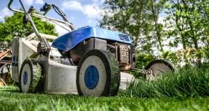 Wann und wie den Rasen mähen ?