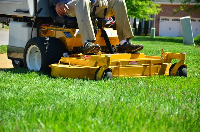 Rasen vertikutieren und den richtigen Zeitpunkt nicht verpassen.